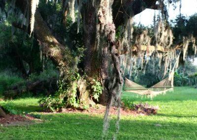 The hammock calls!